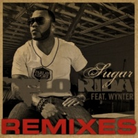 Flo Rida Sugar [feat. Wynter] [Mickey Modelle Remix Edit]