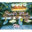 Sugar Ray Floored (Clean Version)