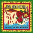 Big Mountain Lean On Me (Party Version)