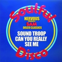 Sound Troop Can You Really See Me (Original Mix)