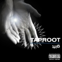 TapRoot Again & Again