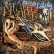 Gerry Rafferty Night Owl