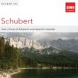Various Artists Essential Schubert