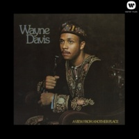 Wayne Davis I Like The Things About Me That I Once Despised