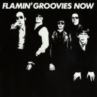 Flamin' Groovies Move It