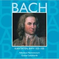 """Gustav Leonhardt Cantata No.103 Ihr werdet weinen und heulen BWV103 : II Recitative - """"Wer sollte nicht in Klagen untergehn"""" [Tenor]"""