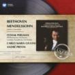 Itzhak Perlman/Philharmonia Orchestra/Carlo Maria Giulini Violin Concerto in D Major, Op. 61: II. Larghetto