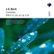 Fritz Werner & Pforzheim Chamber Orchestra Bach, JS : Cantatas BWV Nos 8, 26, 61 & 130  -  Apex