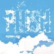 Phish Coral Sky