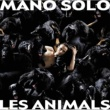 Mano Solo Animals