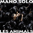 Mano Solo Les Animals