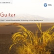 Various Artists Essential Guitar