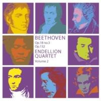 Endellion String Quartet String Quartet No.15 in A minor Op.132 : I Assai sostenuto - Allegro