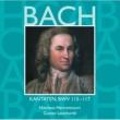 Various Artists Bach, JS : Sacred Cantatas BWV Nos 115 - 117