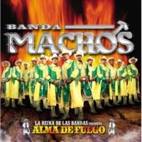 Banda Machos La farsante
