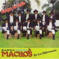 Banda Machos La divina garza