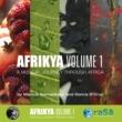Ladysmith Black Mambazo Dlondlobala (Soul Drummers Mix)