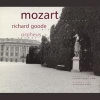Richard Goode No. 20 in D minor (K. 466):ll Romance