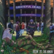 Grateful Dead Dozin' At The Knick: Knickerbocker Arena