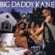 Big Daddy Kane Ain't No Stoppin Us Now
