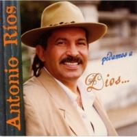 Antonio Ríos Tu Indiferencia