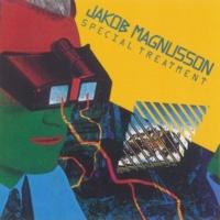 Jakob Magnusson Ginger Man