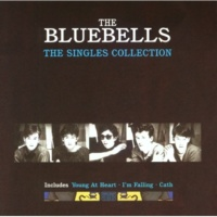 The Bluebells Everybody's Somebody's Fool