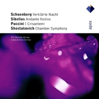 The Helsinki Strings Chamber Symphony for String Orchestra, Op. 110a: V. Largo
