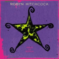 Robyn Hitchcock Mexican God