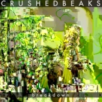 Crushed Beaks Breakdown (Radio Edit)