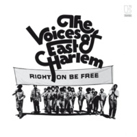 Voices Of East Harlem Simple Song of Freedom (Remastered Version)