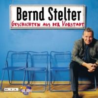Bernd Stelter Der Reihenhausbesitzer