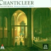Chanticleer Palestrina : Motets, Book 4, 'Canticum canticorum' : Quam pulchra es