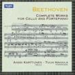 Anssi Karttunen and Tuija Hakkila Twelve Variations on A Theme from G.F. Händel's 'Judas Maccabaeus', WoO45 : Thema [Allegretto]