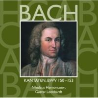 """Gustav Leonhardt Cantata No.151 Süsser Trost, mein Jesus kömmt BWV151 : II Recitative - """"Erfreue dich, mein Herz"""" [Bass]"""