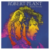 Robert Plant Watching You
