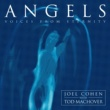 Joël Cohen & Boston Camerata Angels - Voices from Eternity
