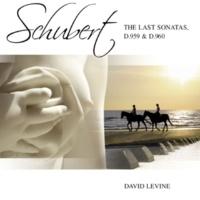 David Levine Sonata for Piano No. 20 in A D959: III. Scherzo (Allegro vivace) & Trio (Un poco più lento)