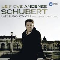 Leif Ove Andsnes Piano Sonata No. 19 in C Minor, D. 958: II. Adagio sempre ligato