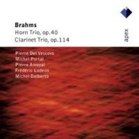 Michel Portal Brahms : Clarinet Trio in A minor Op.114 : II Adagio