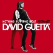 デヴィッド・ゲッタ Nothing But the Beat Ultimate