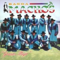 Banda Machos Gracias mujer