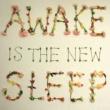 Ben Lee Awake is the New Sleep