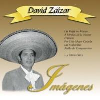 David Zaizar A medias de la noche