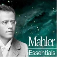 Zubin Mehta Symphony No.2 in C minor, 'Resurrection' : IV Seht feierlich, aber schlicht, 'Urlicht'