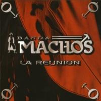 Banda Machos Mi luna, mi estrella (a duo con Laura Flores)