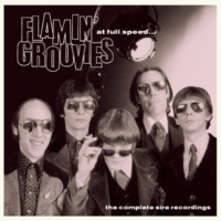 Flamin' Groovies Down Down Down