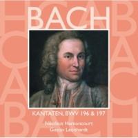 """Gustav Leonhardt Cantata No.197 Gott ist unsre Zuversicht BWV197 : VIII Aria - """"Vergnügen und Lust"""" [Boy Soprano]"""