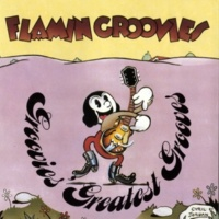 Flamin' Groovies Don't You Lie To Me