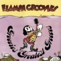 Flamin' Groovies Between The Lines